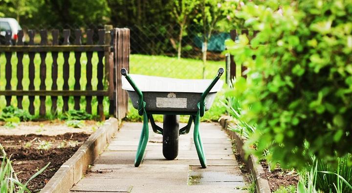 Allotment Banner, wheelbarrow on a garden path