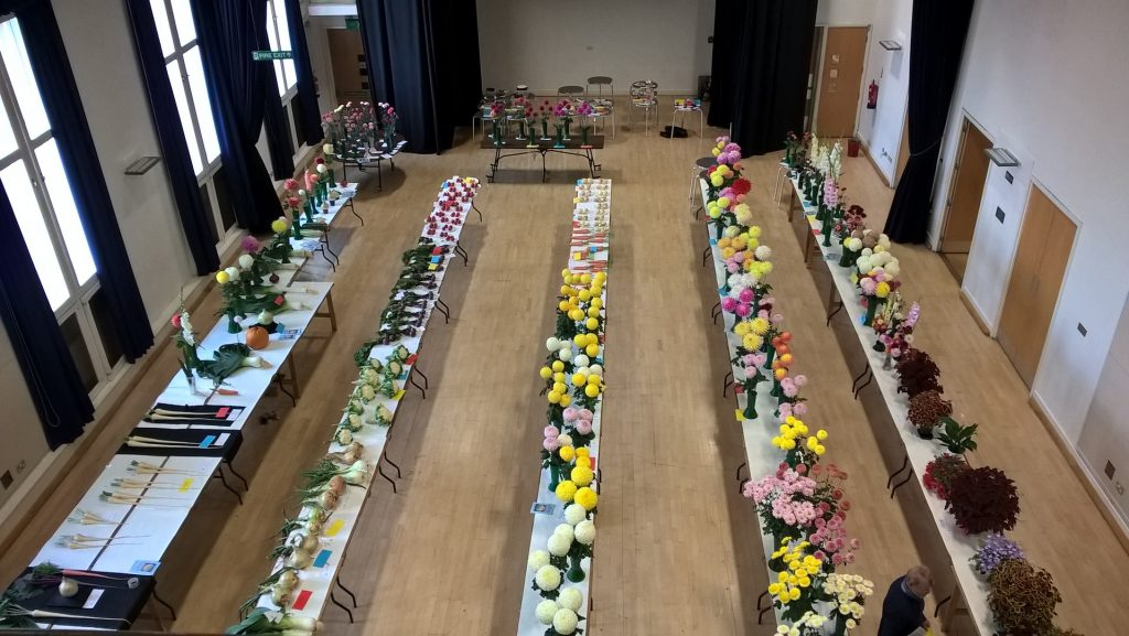 Horticultural and Produce Show 2016 - Overview of the Show